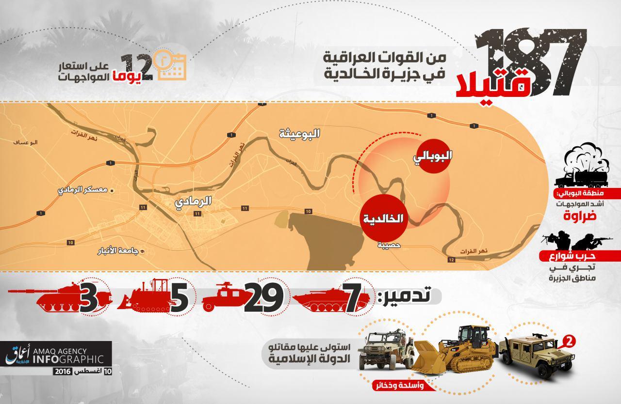 187 قتيلا من القوات العراقية خلال 12 يوما من المواجهات بجزيرة الخالدية شمال شرقي الرمادي coobra.net