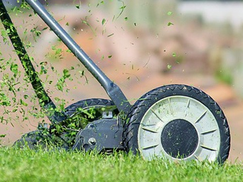 lawn-mowing-prices-northern-beaches-sydney_small.jpg