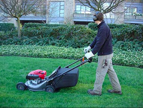 lawn-mowing-service-northern-beaches-sydney_small.jpg