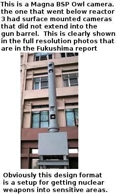 buildingowl.jpg