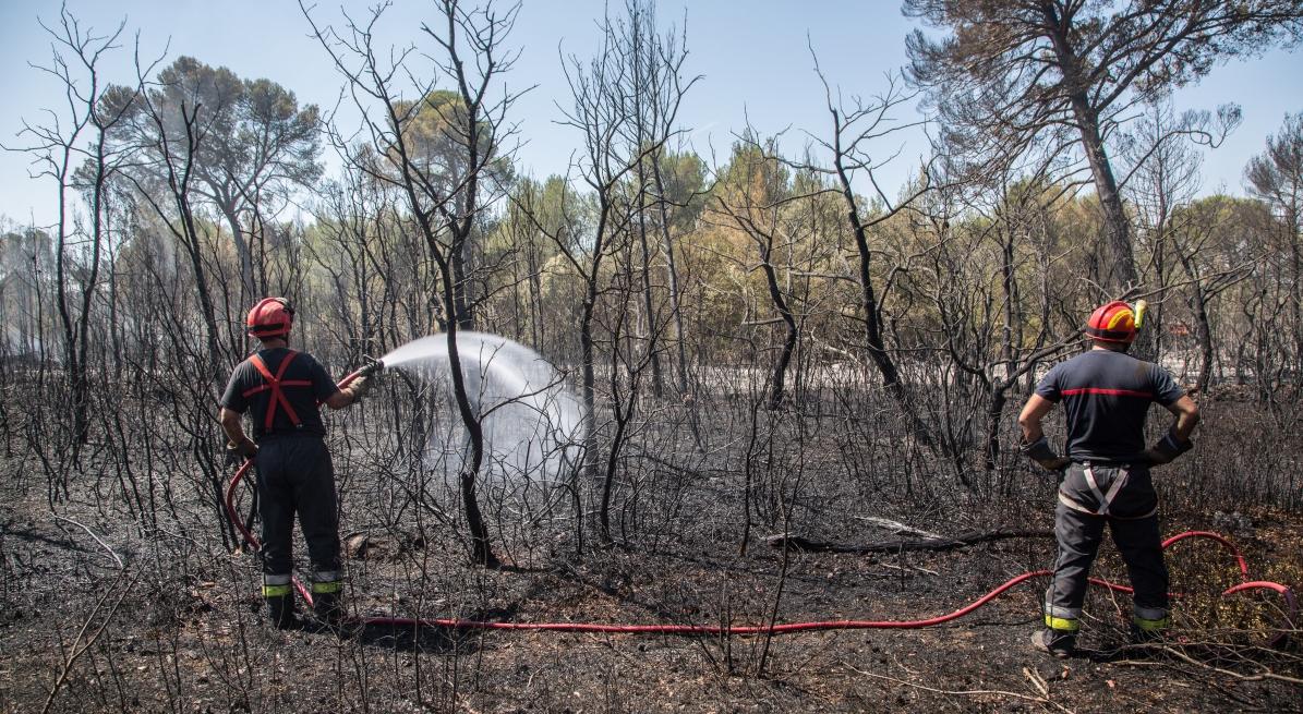 Feu de forêt de Saint-Cannat, premier gros incendie de la saison. PHOTO : ©IAN HANNING/REA