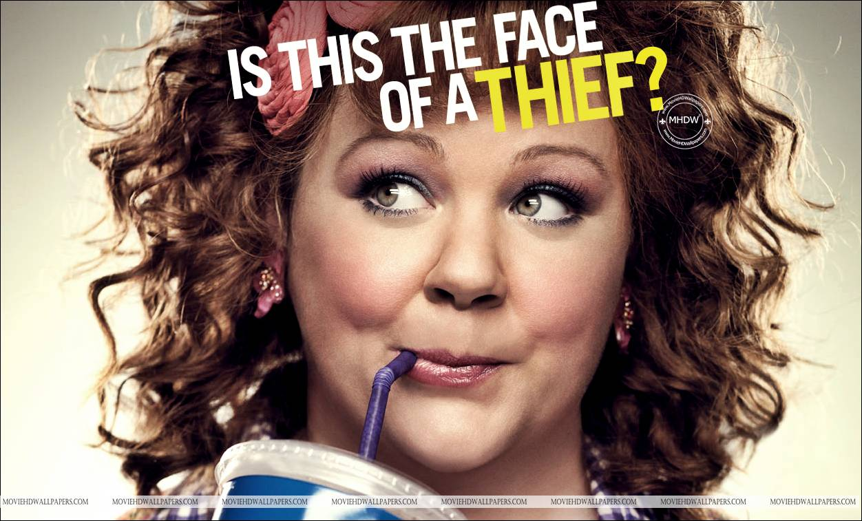 Identity Thief 2013 movie