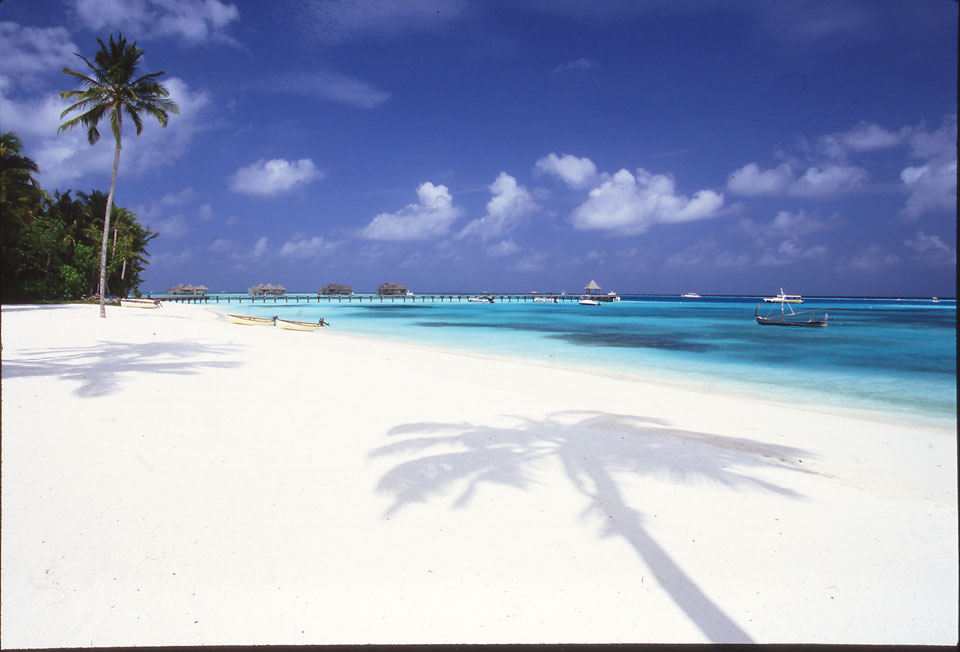 maldives014.jpg
