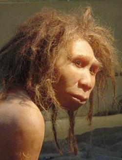 Homo georgicus à Dmanisi