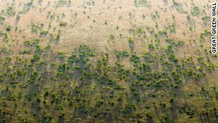 La Grande Muraille Verte d'Afrique vise à ralentir la désertification.