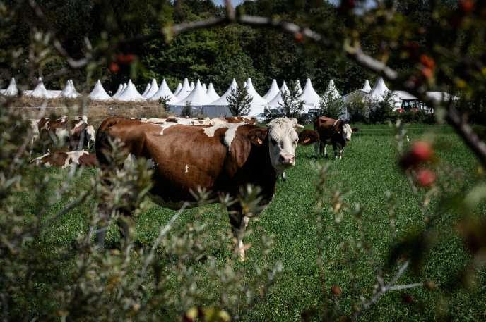 A Bourg-les-Valence (Drôme), le 17 septembre 2019,               les tentes du salon agricole international Tech &               Bio.