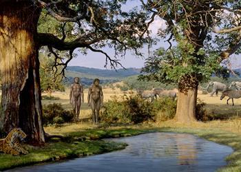 L'environnement à Dmanisi, il y a 1,8 million d'année