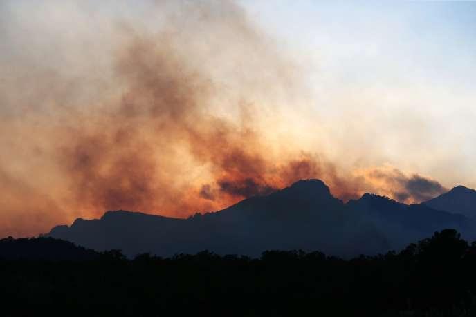 «Il n'y a plus de menace directe sur le village de               Sari-Solenzara», a précisé de son côté la préfecture de               Corse-du-Sud.