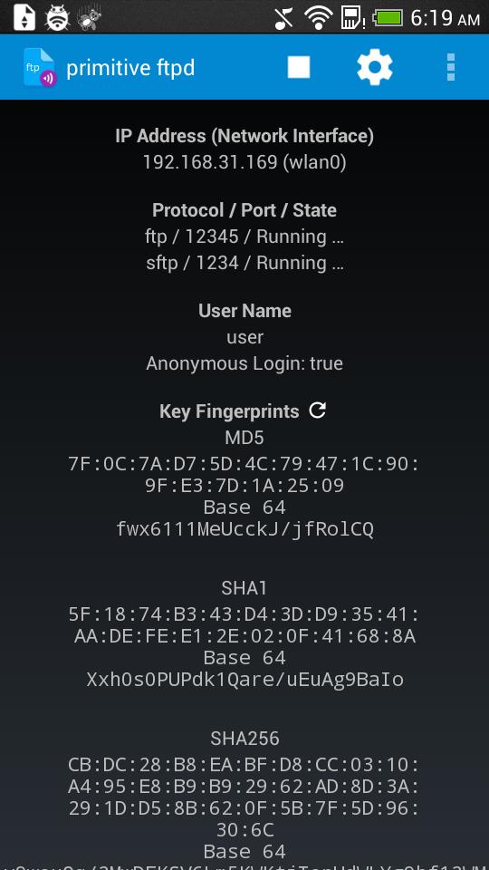 Primitive FTPd и его настройки