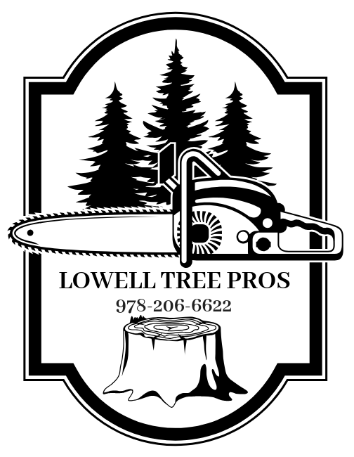 lowell_tree_pros.png