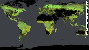 Densité globale des arbres, calculée par l'équipe de Crowther.  Les forêts existantes sont indiquées en vert, les forêts potentielles sont en jaune.
