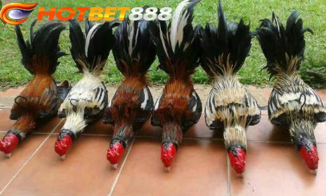 e58059526d3580b90fbd29de8f813640.jpg
