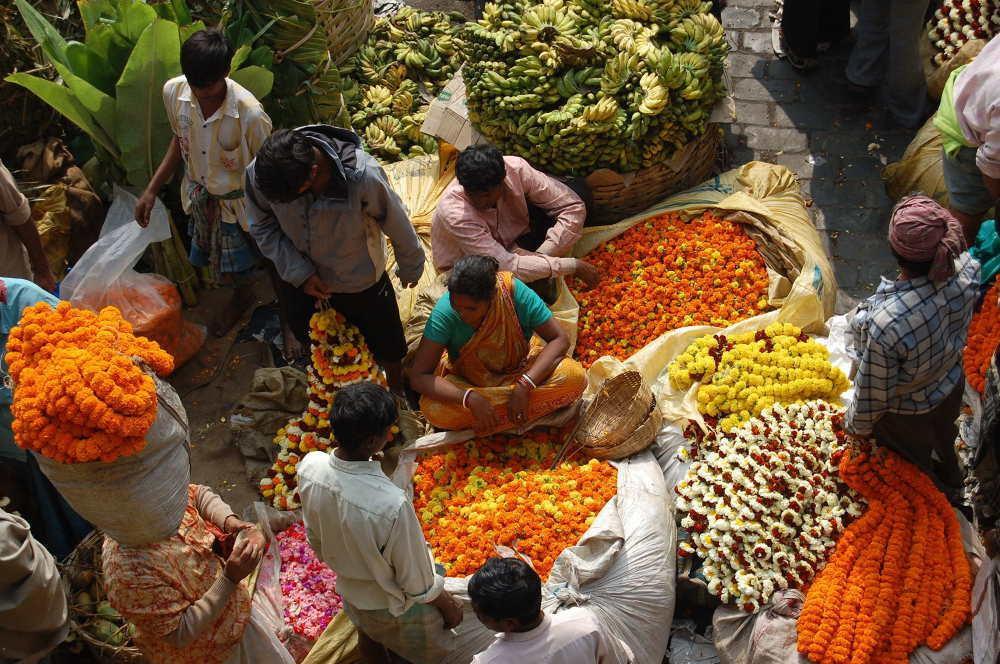 Targ kwiatowy, Kalkuta