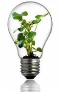 bulb-216975_1280_small.jpg
