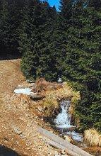 Górski strumień przy szlaku