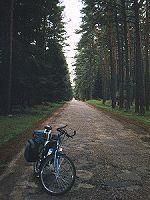 Rezerwat Konika Polskiego w Popielnie