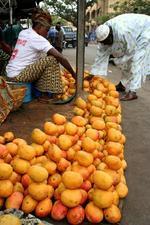 Bamako full of mangos