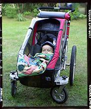 CTS-Cougar w opcji wózek