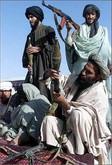 talib-pakistan1.jpg