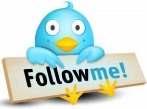 Twitter_logo-300x222