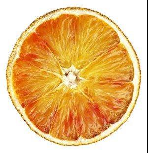 File:Scan of an orange 3.jpg