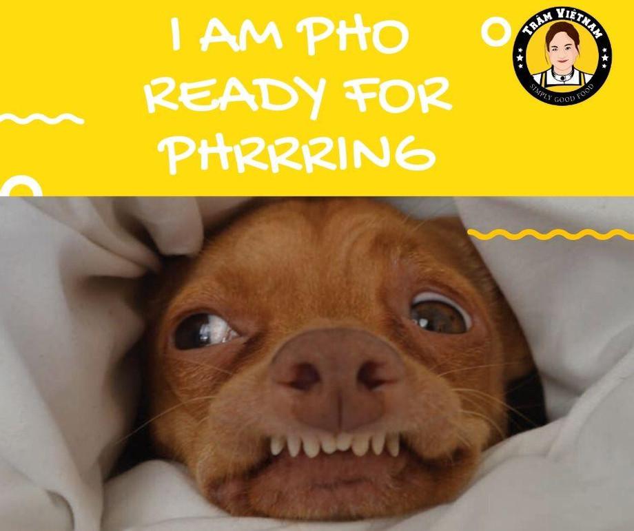 I'm_PHO_-_Ready_for_PHrring__toowoomba_takeaway_food.jpg