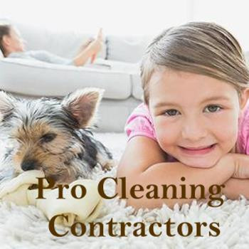 Pro-Cleaning-contractor-350x350.jpg
