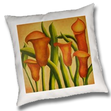 callas-on-pillow.png