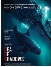 seaofshadows1.JPG