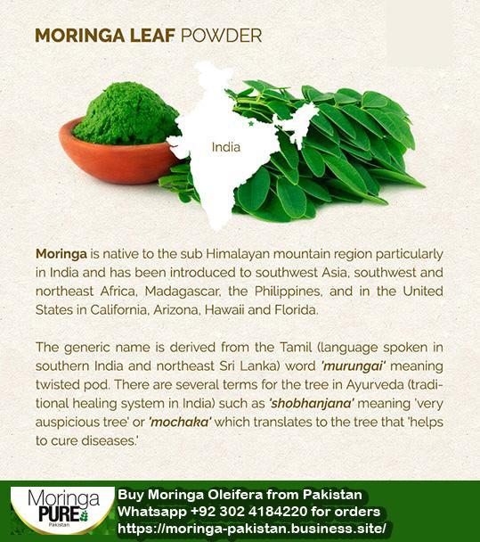 moringahistory.jpg