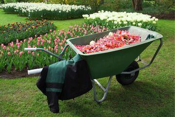 wheelbarrow-with-flowers.jpg