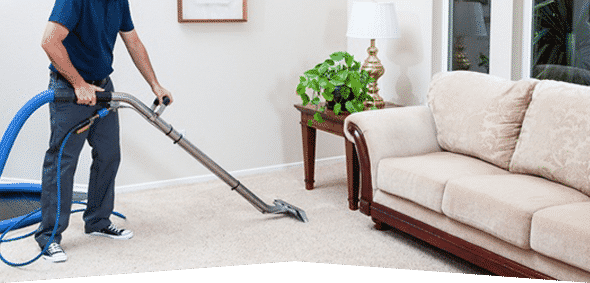 carpetcleaningcompanies.png