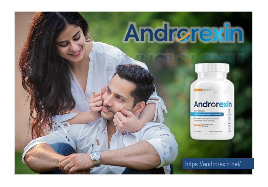 androrexinnet.jpg