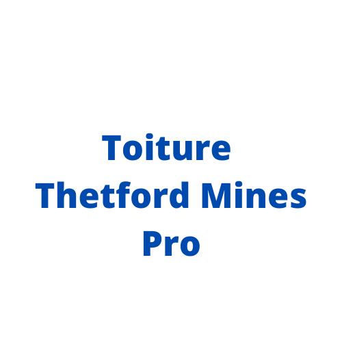 logo_de_toiture_thetford_mines_pro.png