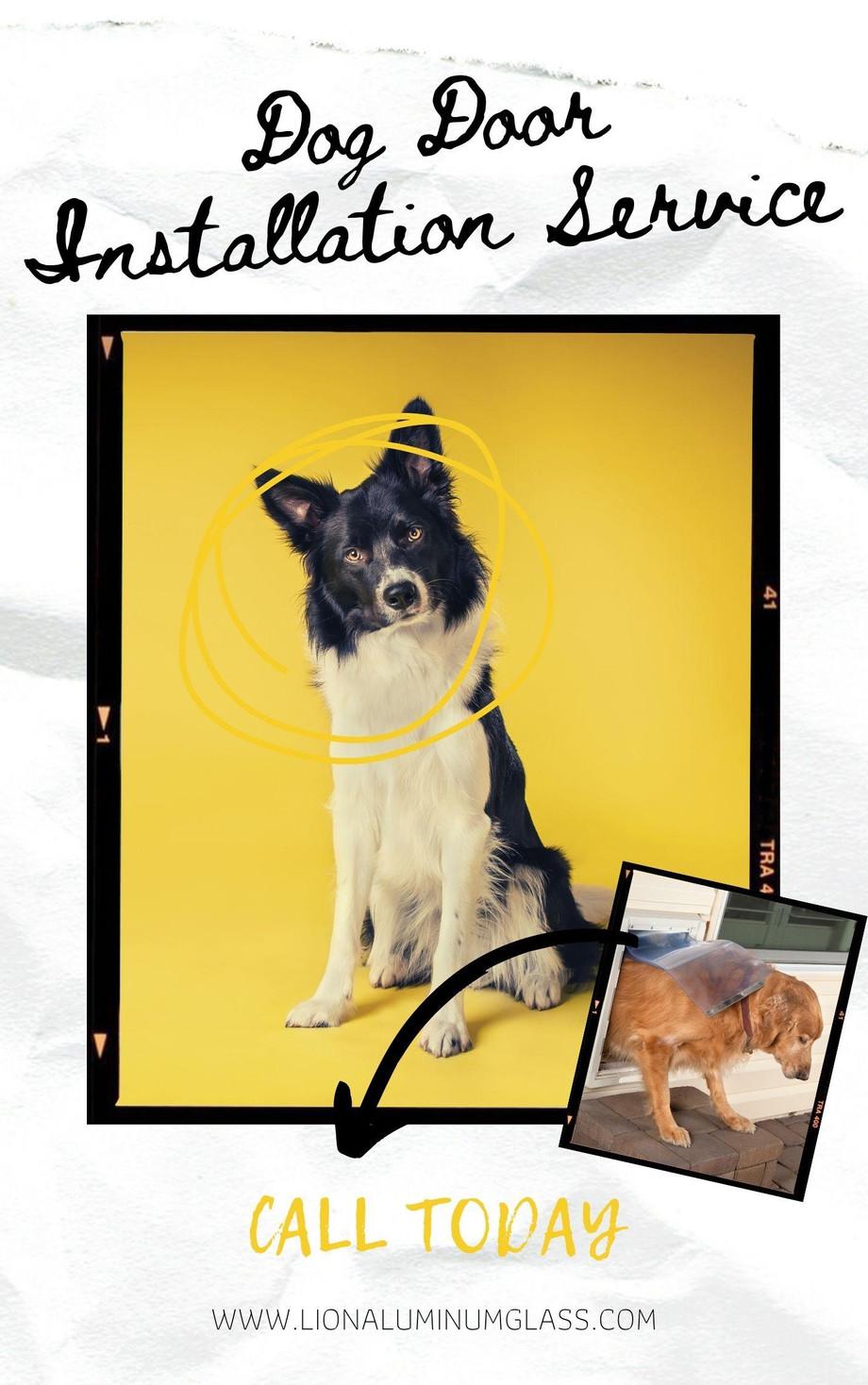 doggydoorinstallationcompanydubailionaluminiumandglass.jpg
