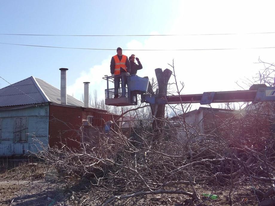 tree-removal-emergency_orig.jpg