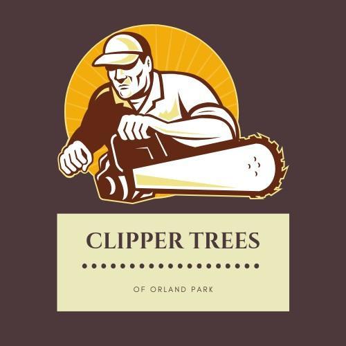 clippertrees.jpg
