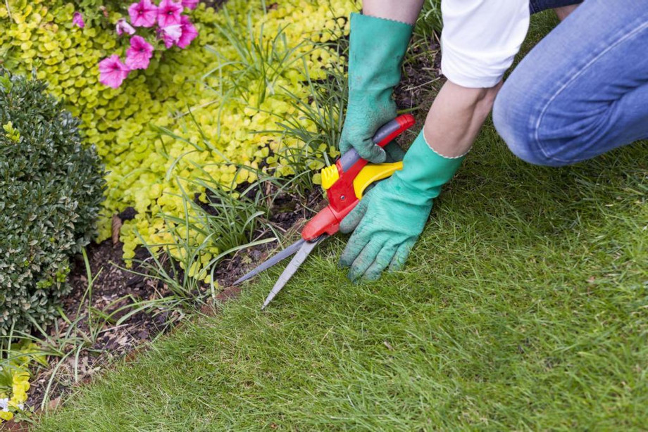 Butler-County-Landscaping-Services.jpg