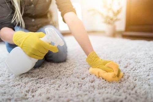 carpetcleaningservices_orig.jpg
