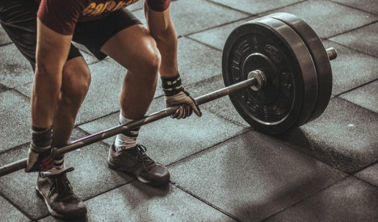 bodybuildingorzcdxbdw8ul2ngsdk2scmvmiv3ijj8awlvrswneeo.jpg